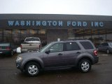 2009 Sterling Grey Metallic Ford Escape XLT V6 4WD #26437016
