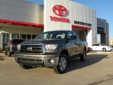 2010 Pyrite Brown Mica Toyota Tundra Double Cab 4x4 #26460132