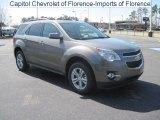 2010 Mocha Steel Metallic Chevrolet Equinox LT #26505734
