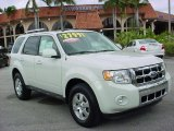 2009 White Suede Ford Escape Limited V6 #26595144