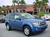 2009 Sport Blue Metallic Ford Escape XLT V6 #26595148