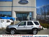 2006 Silver Metallic Ford Escape XLT V6 4WD #26595023