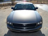 2005 Mineral Grey Metallic Ford Mustang V6 Deluxe Coupe #26595806