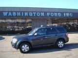 2009 Black Pearl Slate Metallic Ford Escape XLT V6 4WD #26673257