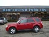 2009 Sangria Red Metallic Ford Escape XLT V6 4WD #26881725