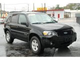 2006 Black Ford Escape Hybrid #26996823