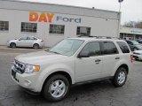2009 Sterling Grey Metallic Ford Escape XLT V6 4WD #27070999