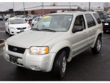 2003 Gold Ash Metallic Ford Escape Limited 4WD #27113162