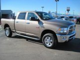 2010 Austin Tan Pearl Dodge Ram 3500 Big Horn Edition Crew Cab 4x4 #27169326