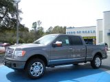 2010 Sterling Grey Metallic Ford F150 Platinum SuperCrew 4x4 #27168850