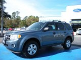 2010 Steel Blue Metallic Ford Escape XLT #27168866