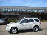 2009 Light Sage Metallic Ford Escape XLT V6 4WD #27235387