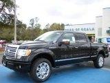 2010 Tuxedo Black Ford F150 Platinum SuperCrew 4x4 #27324823