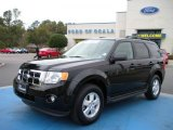 2009 Black Pearl Slate Metallic Ford Escape XLT V6 #27324836