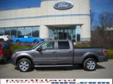 2010 Sterling Grey Metallic Ford F150 FX4 SuperCrew 4x4 #27324722