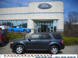 2009 Black Pearl Slate Metallic Ford Escape XLT V6 4WD #27324734