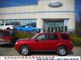 2009 Sangria Red Metallic Ford Escape XLT V6 4WD #27324735