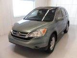 2010 Opal Sage Metallic Honda CR-V EX-L #27325255