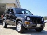2002 Black Jeep Liberty Sport 4x4 #27440632