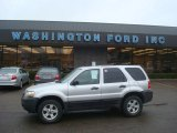 2006 Silver Metallic Ford Escape XLT V6 4WD #27499189