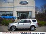 2009 Brilliant Silver Metallic Ford Escape XLT V6 4WD #27498937