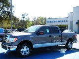 2010 Sterling Grey Metallic Ford F150 XLT SuperCrew #27544148