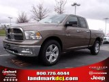 2010 Austin Tan Pearl Dodge Ram 1500 Big Horn Quad Cab #27625373