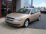 2005 Light Driftwood Metallic Chevrolet Malibu Maxx LS Wagon #27625815