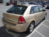 2005 Light Driftwood Metallic Chevrolet Malibu Maxx LS Wagon #27770947