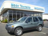 2006 Titanium Green Metallic Ford Escape XLT V6 4WD #27993251