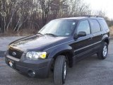 2006 Black Ford Escape XLT V6 4WD #28092221