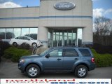 2010 Steel Blue Metallic Ford Escape XLT V6 4WD #28092170
