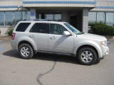 2009 Light Sage Metallic Ford Escape Limited V6 #28092548
