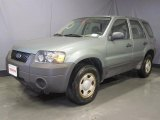 2006 Titanium Green Metallic Ford Escape XLS 4WD #28092557