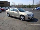2010 Smokestone Metallic Ford Fusion SE #28143498
