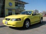 2001 Zinc Yellow Metallic Ford Mustang V6 Convertible #2813147