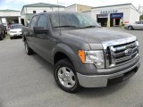 2010 Sterling Grey Metallic Ford F150 XLT SuperCrew #28196477