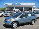 2010 Opal Sage Metallic Honda CR-V LX #28247223
