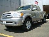 2005 Silver Sky Metallic Toyota Tundra SR5 Double Cab #28246835
