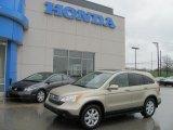 2007 Borrego Beige Metallic Honda CR-V EX-L 4WD #28312182
