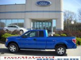2010 Blue Flame Metallic Ford F150 STX SuperCab 4x4 #28402708