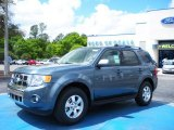 2010 Steel Blue Metallic Ford Escape Limited V6 #28461384