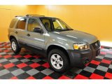 2006 Titanium Green Metallic Ford Escape XLT V6 #28527866