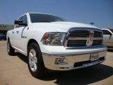 2010 Mineral Gray Metallic Dodge Ram 1500 Big Horn Quad Cab #28659724