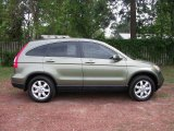 2007 Borrego Beige Metallic Honda CR-V EX-L #28802382