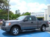 2010 Sterling Grey Metallic Ford F150 STX SuperCab #28874690