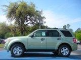 2010 Ford Escape Kiwi Green Metallic