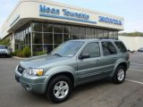 2006 Titanium Green Metallic Ford Escape Hybrid #28936694