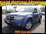 2009 Sport Blue Metallic Ford Escape XLT V6 4WD #28936448