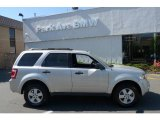 2009 Brilliant Silver Metallic Ford Escape XLT V6 4WD #29004608